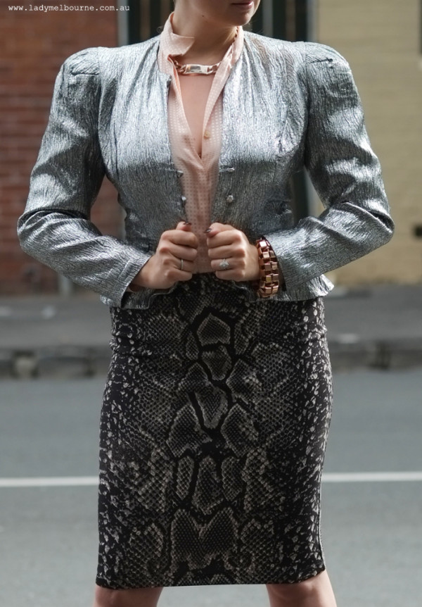 Silver cropped jacket and snake print skirt