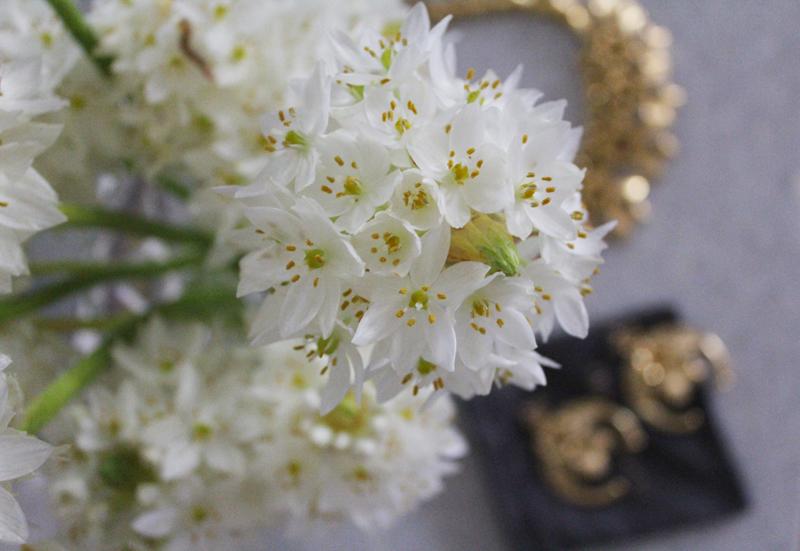 Elizabeth Cole Statement jewelry | more on www.ladymelbourne.com.au